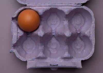 Egg_Purple
